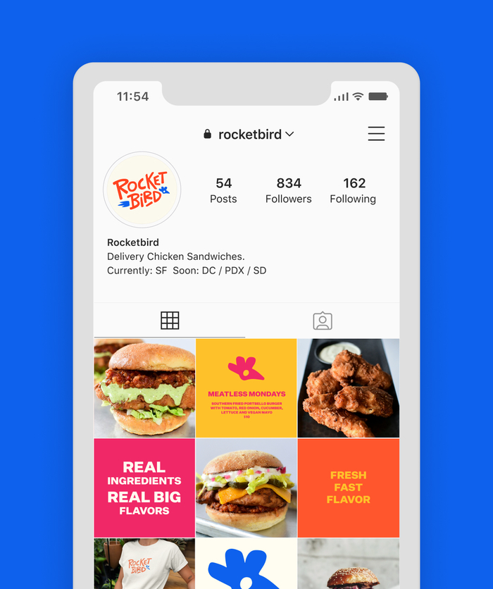 iphone screen showing Rocketbird instagram overview page